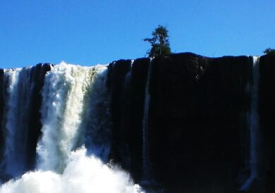 A Dalek at Iguazu?
