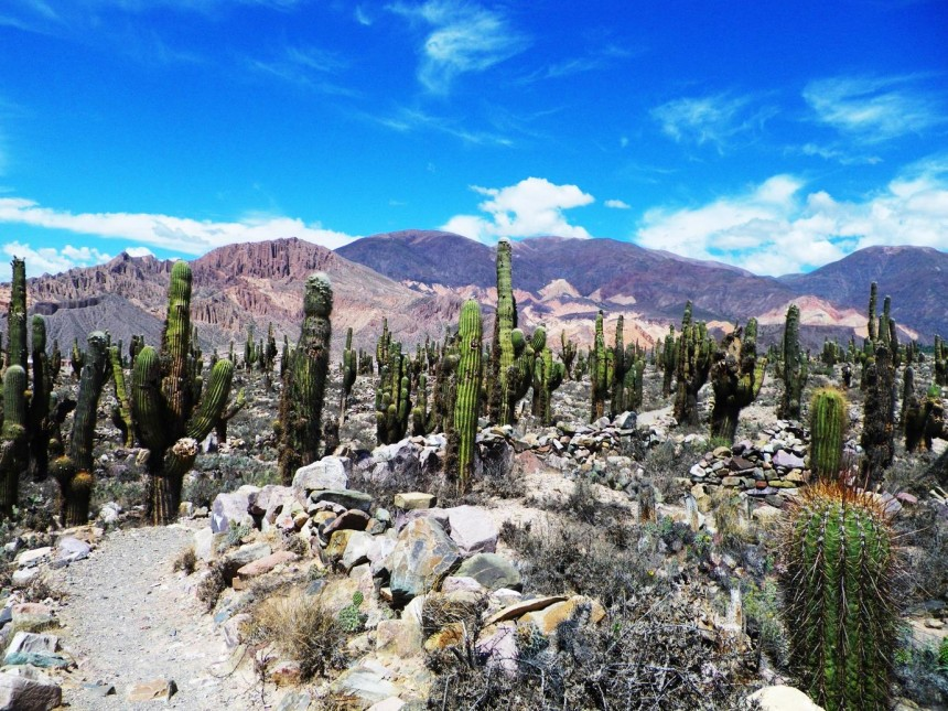 argentina salta jujuy one day from salta 6