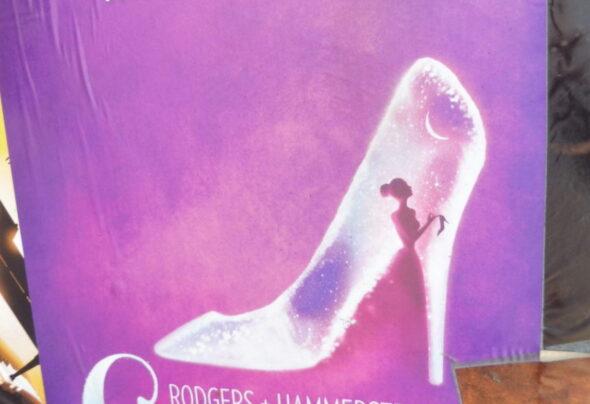 Cinderella the Survivor